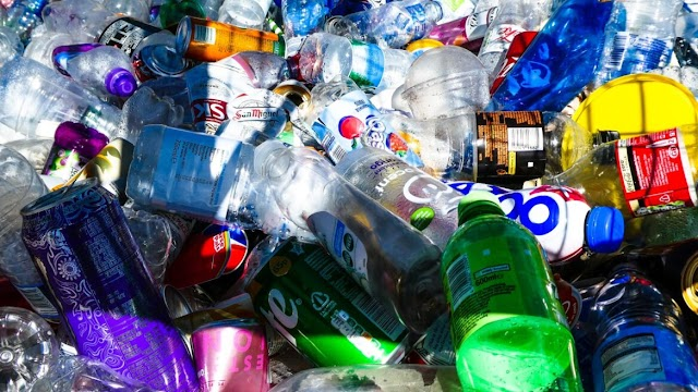 En Israel buscan reciclar el plástico con el uso de bacterias