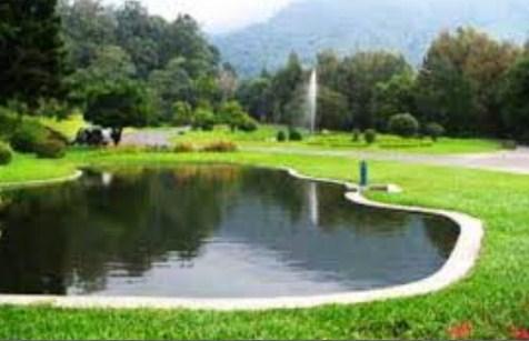 Destinasi Obyek Wisata Kebun Raya Cibodas Di Sindang Jaya