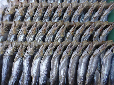 Pescado en el mercado Tsukiji