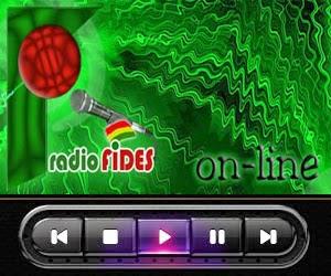 radio patria nueva bolivia