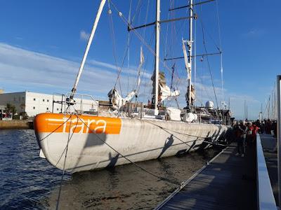 Tara fait son grand retour à Lorient