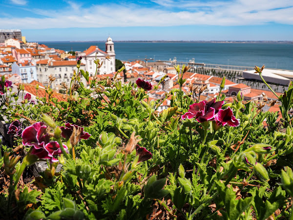 PORTUGAL | LISBONNE : CITY GUIDE & CONSEILS