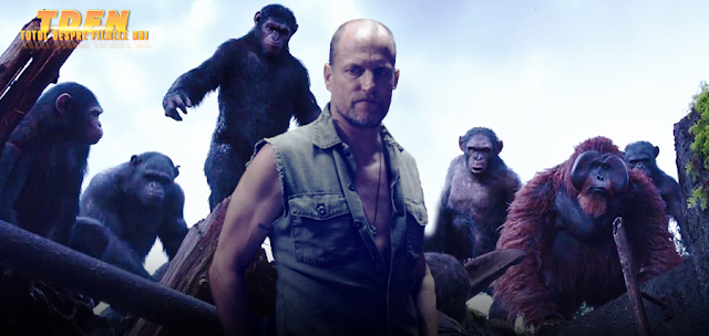 Woody Harrelson va lupta cu primatele în War Of The Planet Of The Apes