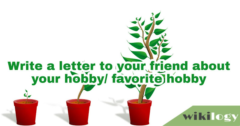 Write a letter to your friend about your favorite hobby