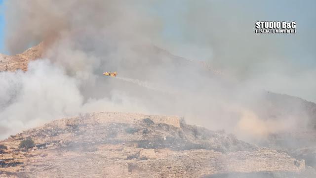 Στις φλόγες οι Μυκήνες: Με ενισχυμένες δυνάμεις συνεχίζεται η μάχη στην πυρκαγιά