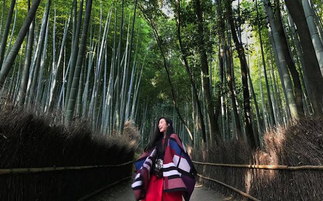Chuyến đi Nhật trải nghiệm chỉ với 40 triệu đồng