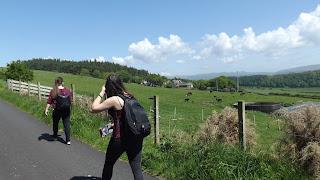 Túra Millport-ból az Isle of Cumbrae-n
