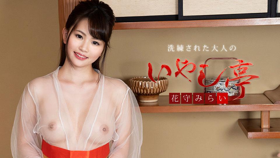 Mirai Hanamori Sophisticated Adult Healing