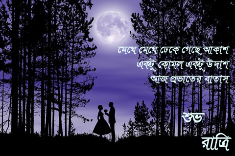Good Night Image In Bengali