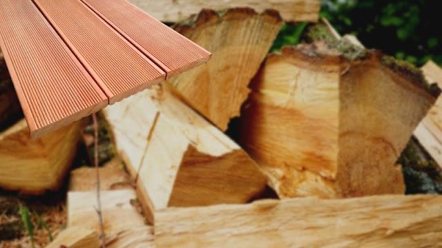karakteristik kayu rengas