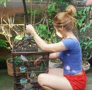 Cara merawat burung yang baik dan benar