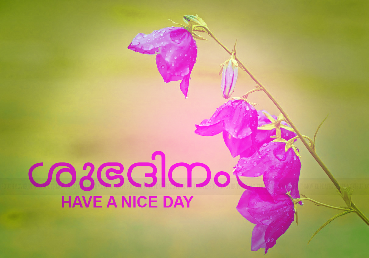 Beautiful New Good Morning Images Malayalam Hd Greetings Images
