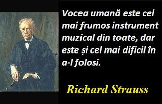 Citatul zilei: 11 iunie - Richard Strauss