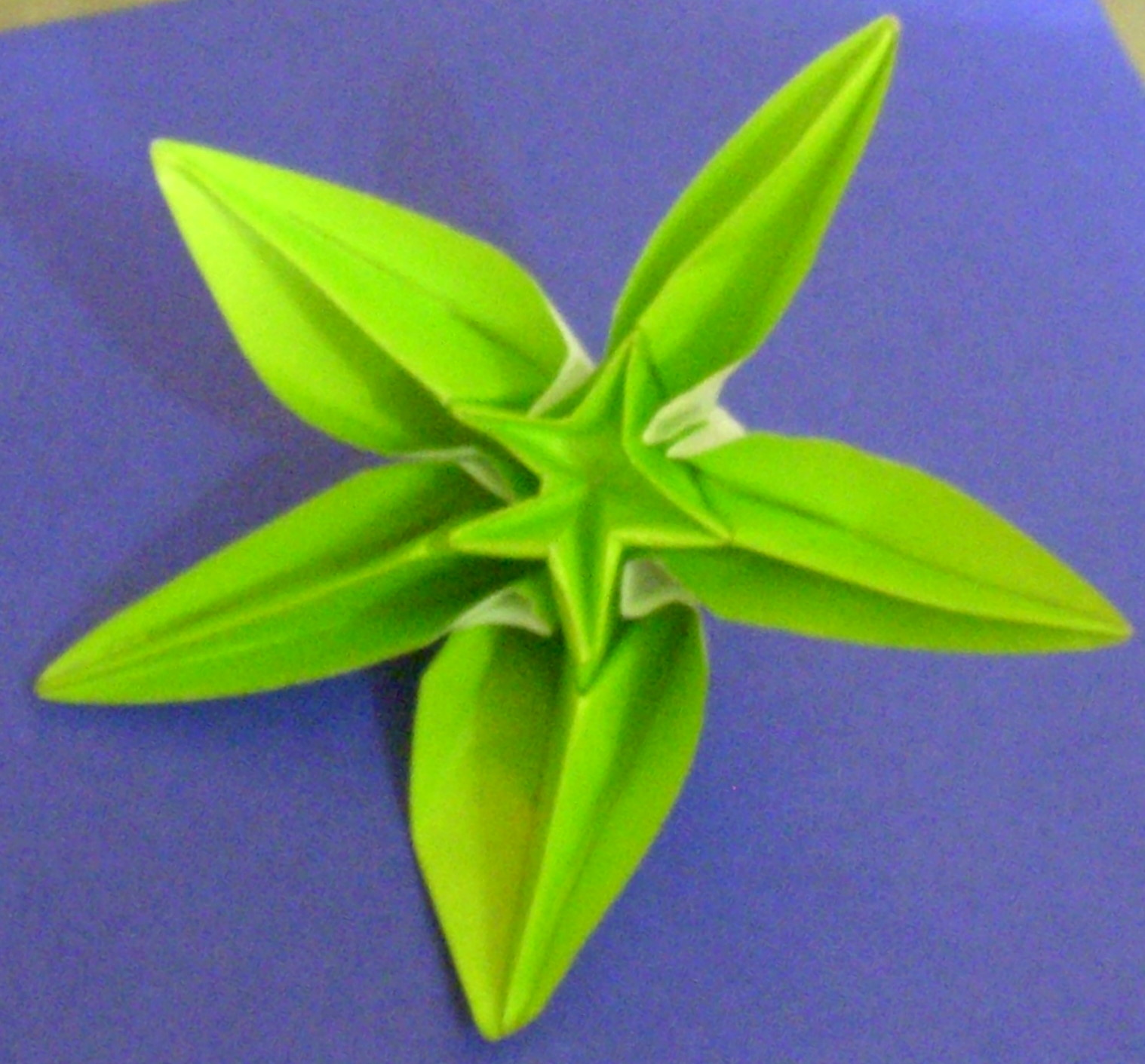 Origami origami carambola mightylinksfo