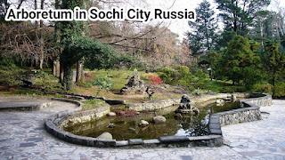 Arboretum in Sochi City Russia