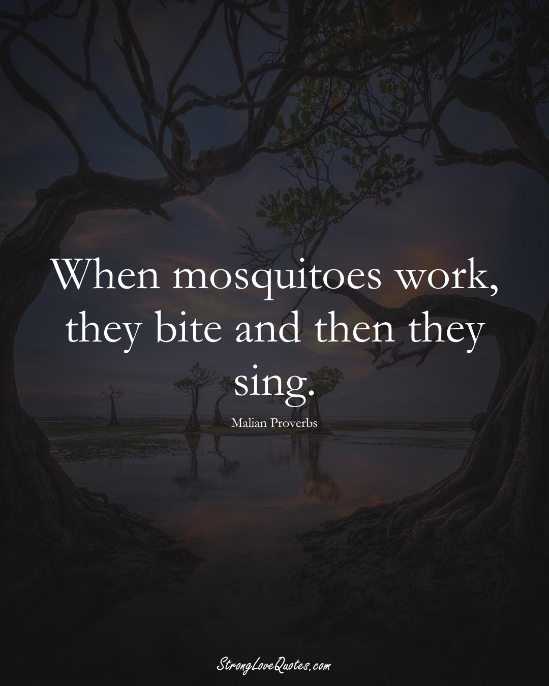 When mosquitoes work, they bite and then they sing. (Malian Sayings);  #AfricanSayings