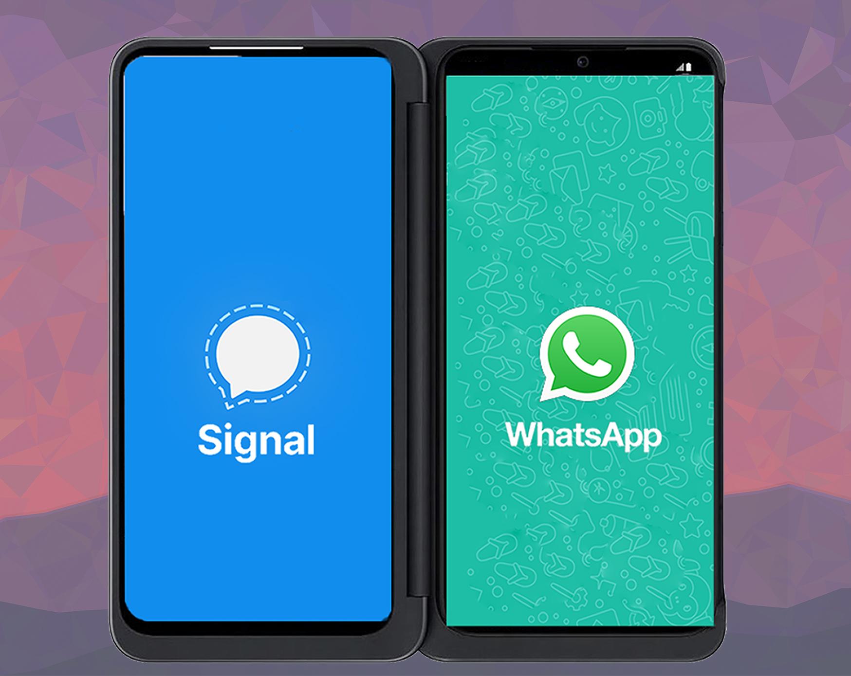 صورة لهاتفين يحمل كل منهما صورة وشعار تطبيق واتساب وصورة وشعار تطبيق سيجنال بديل الواتسب
