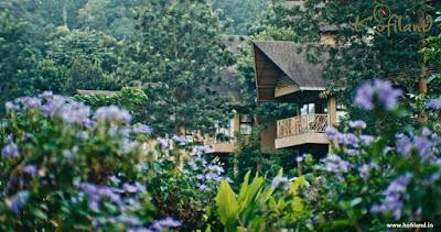 Ayurvedic resorts in Kerala,
