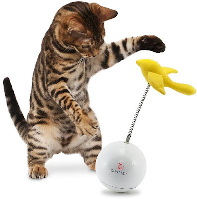 Chatter Cat Toy
