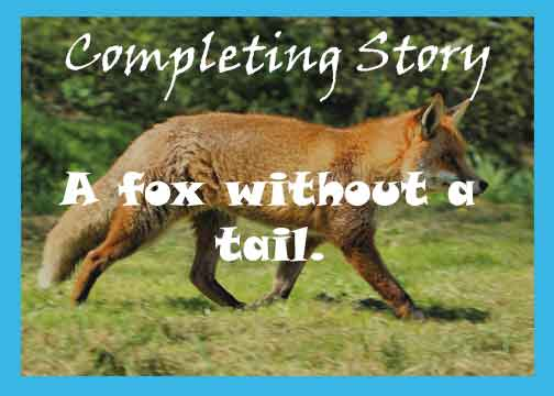 A fox without a tail story with moral. As you sow, so shall you reap story.