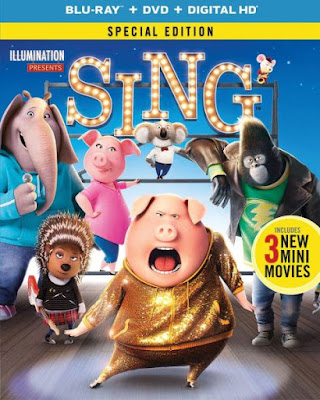 Sing 2016 Dual Audio BRRip 480p 300mb ESub
