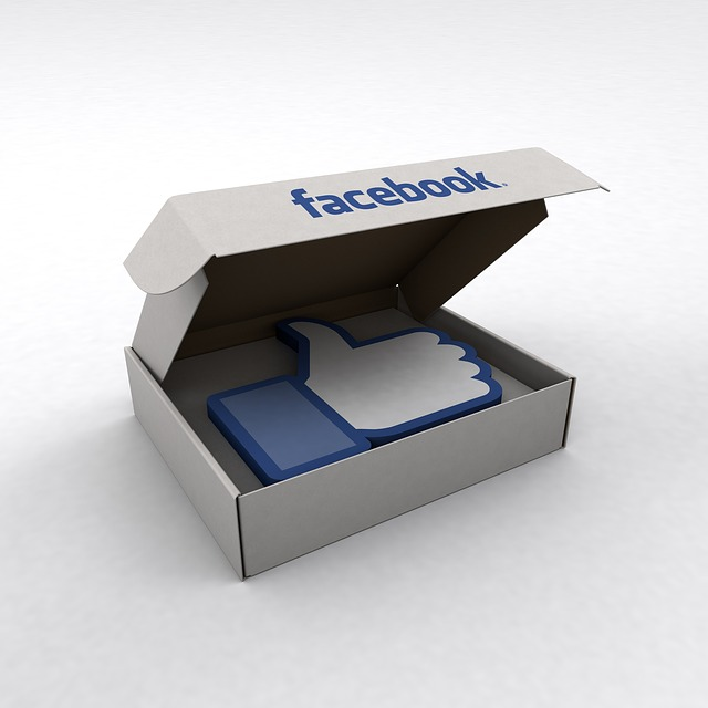 facebook like box kaise add kare