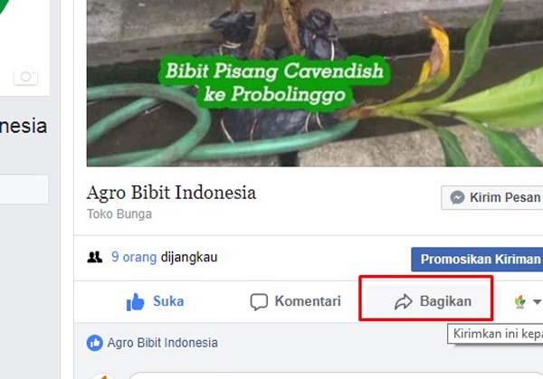 Cara Membagikan Status Halaman ke Akun Facebook