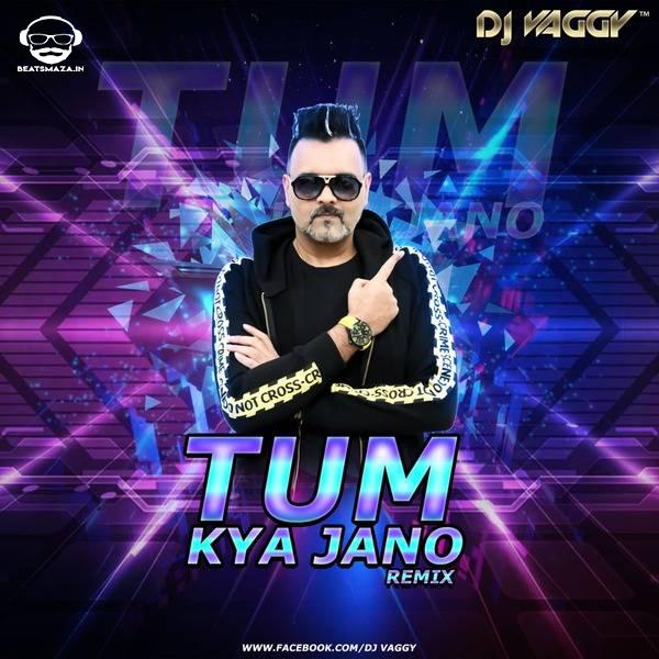 Tum Kya Jano - (2019 Mix) - DJ Vaggy