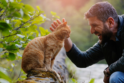 man stroking ginger cat sitting on wall