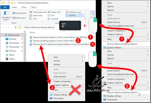 Windows Advanced Options