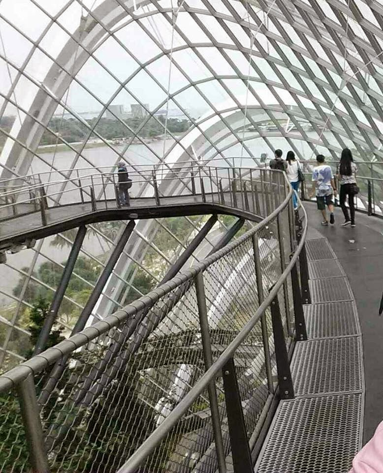 Cloud Walk Way Cloud Forest Gardens by the Bay Singapore
