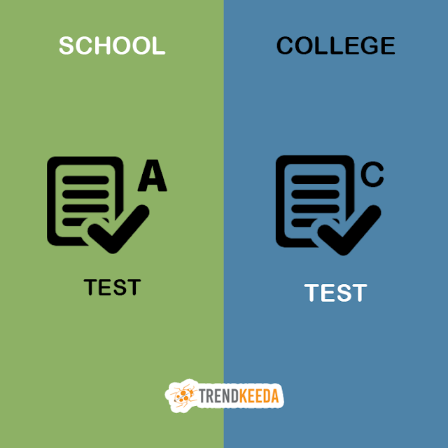School-VS-College-Life-Test-Grades-System