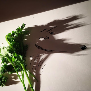 Green Pear Diaries, Vincent Bal, garabatos, doodle, sombras, shadows