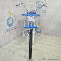 26 Inch Evergreen R1 Butterfly City Bike