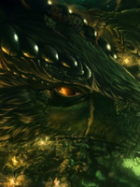 A Dragon's Curiosity