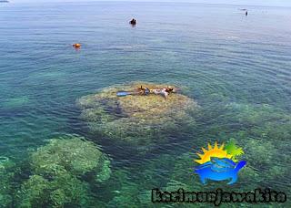 kegiatan snorkeling tour laut karimun jawa