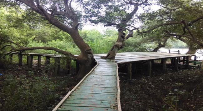 Coringa Wildlife Sanctuary