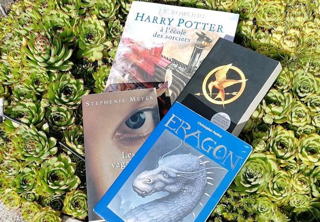 Harry Potter, Hunger Games, Les âmes vagabondes et Eragon sur un parterre de succulentes.