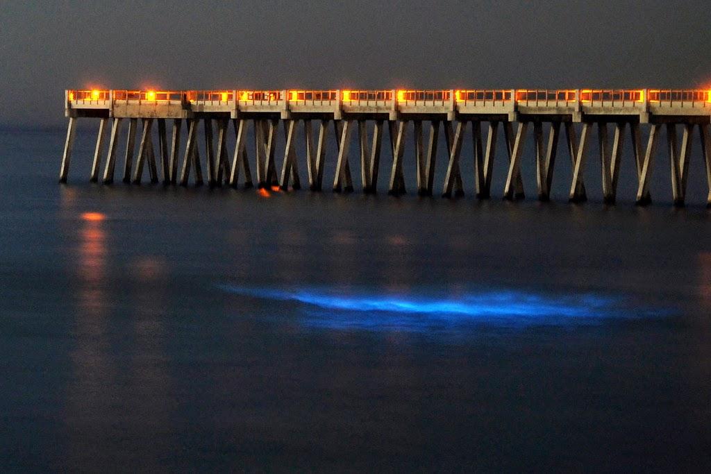 Inilah ! 6 Lautan Yang Bersinar Pada Malam Hari