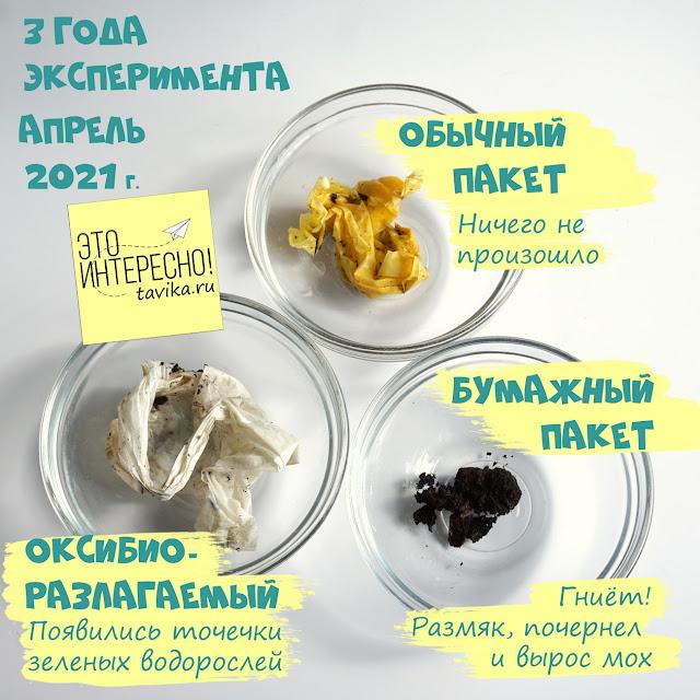 эксперимент по экологии с пакетами