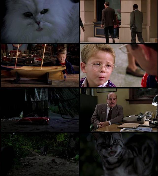 Stuart Little 1999 Dual Audio Hindi 720p BluRay