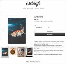 Webshop Watchlife.com