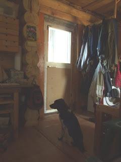 самодельная дверь, общий вид