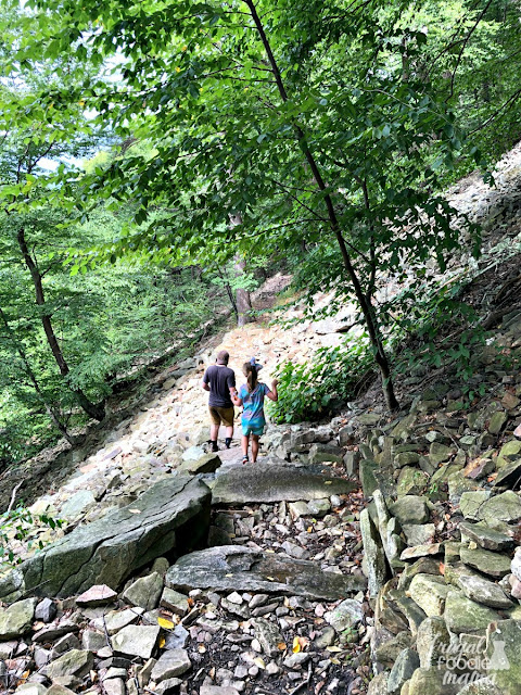 If you and your family would like to experience part of the Appalachian Trail that runs through Pennsylvania, then be sure to make the 30 minute drive from Hershey to Duncannon to hike the Hawk Rock trail.