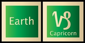 Capricorn the Earth Sign