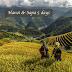 Combo: Sapa – Halong Bay Tour 4 Days