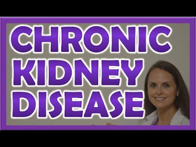 The Chronic Kidney Disease Solution Review: