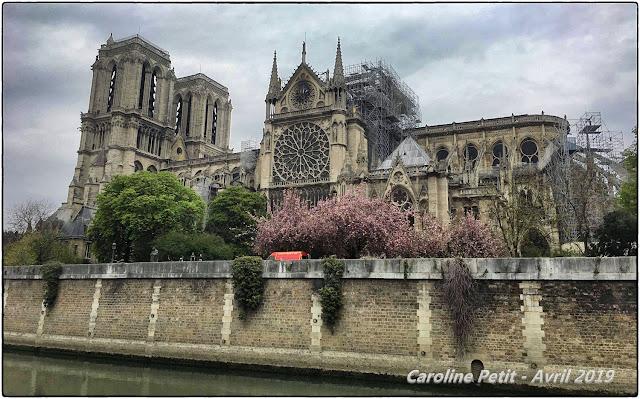 PARIS (75) - Cathédrale Notre-Dame 16 avril 2019