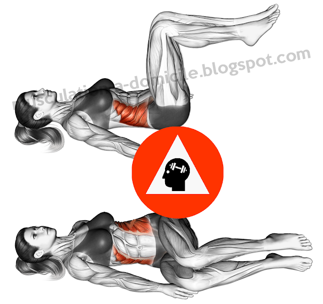 exercice musculation abdos twists oblique au sol