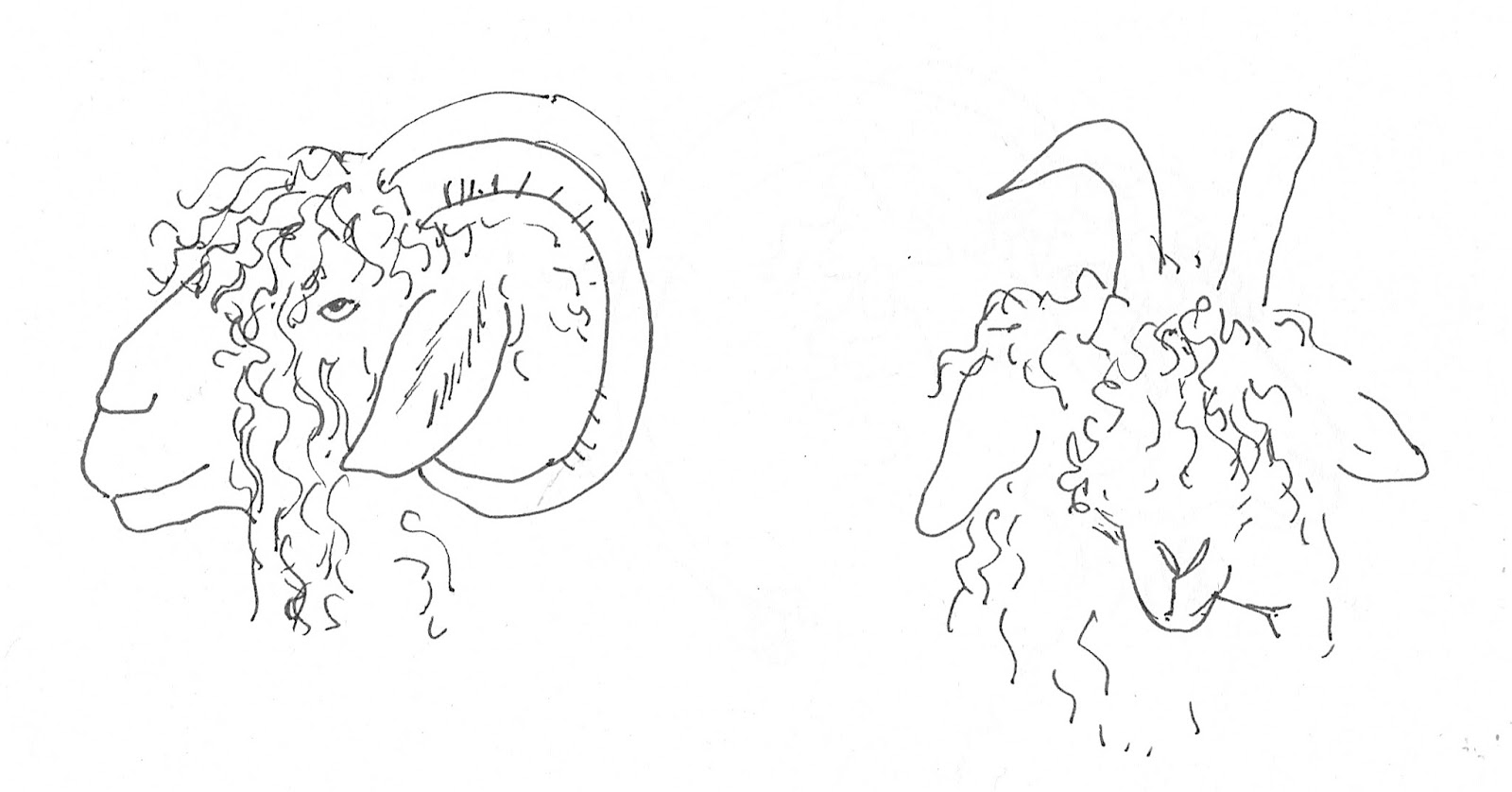Draw2C
